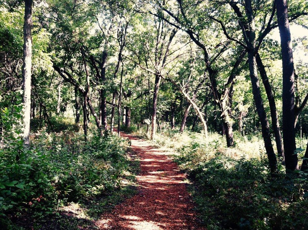 trail run photo