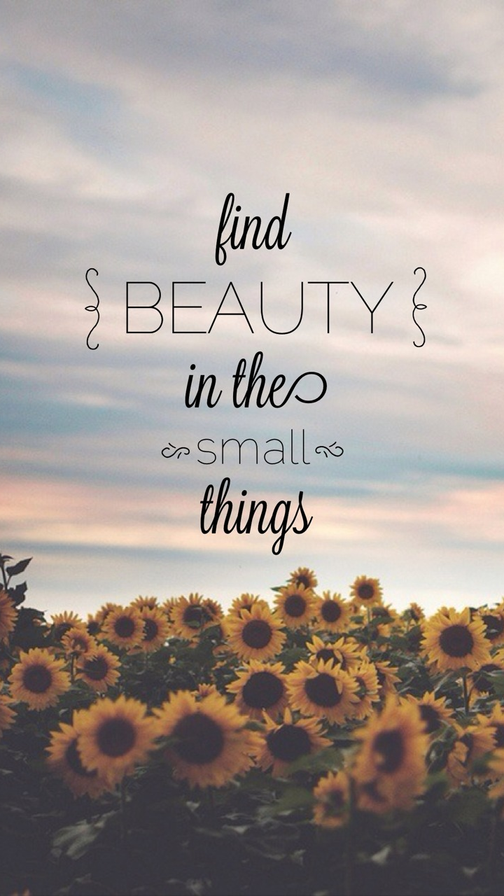 find-beauty-in-the-small-things